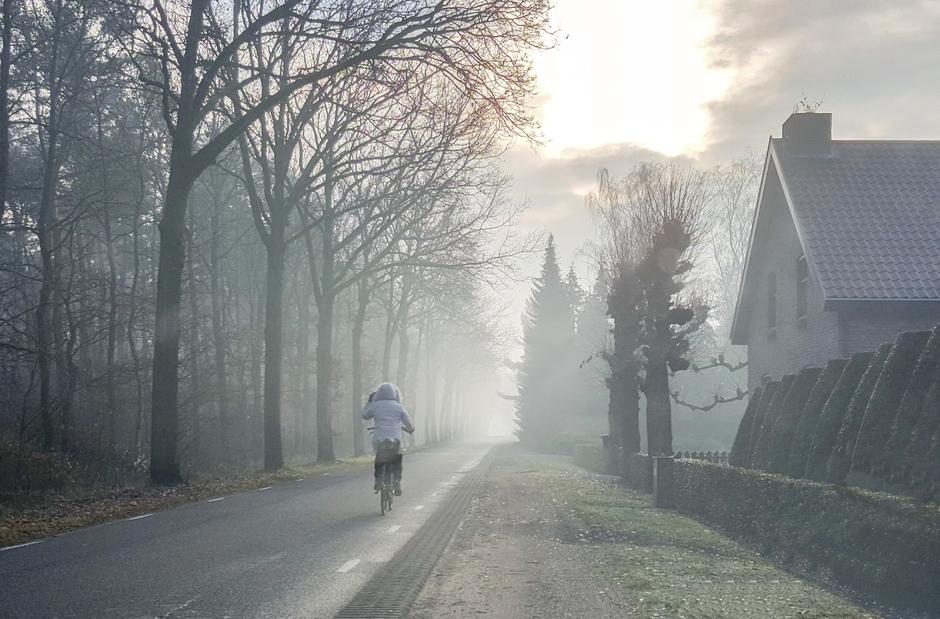 Morgenvroeg opletten!  Een koude start van de dag met mist en vorst aan de grond