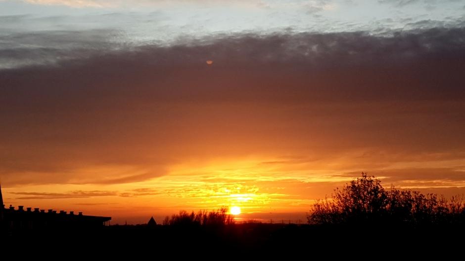 Zonsondergang in Lisse