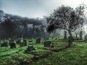 Kirkley Cemetery mist