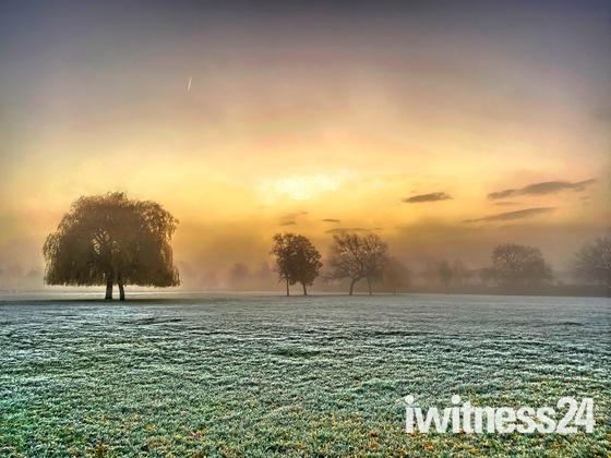 Morning fog over the park