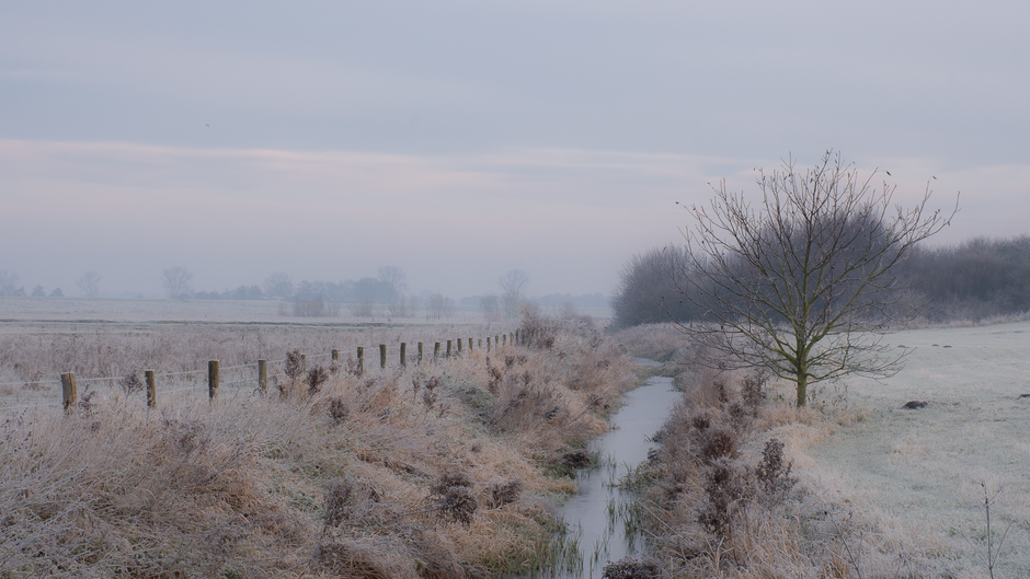 Een koud begin van december