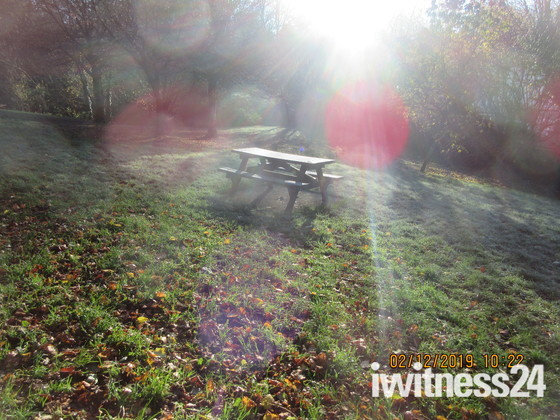 Early sunshine and frost at The Glen, Honiton