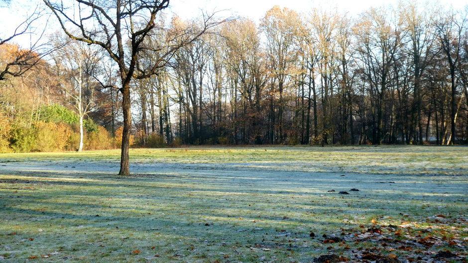 wel was het weer winters deze ochtend