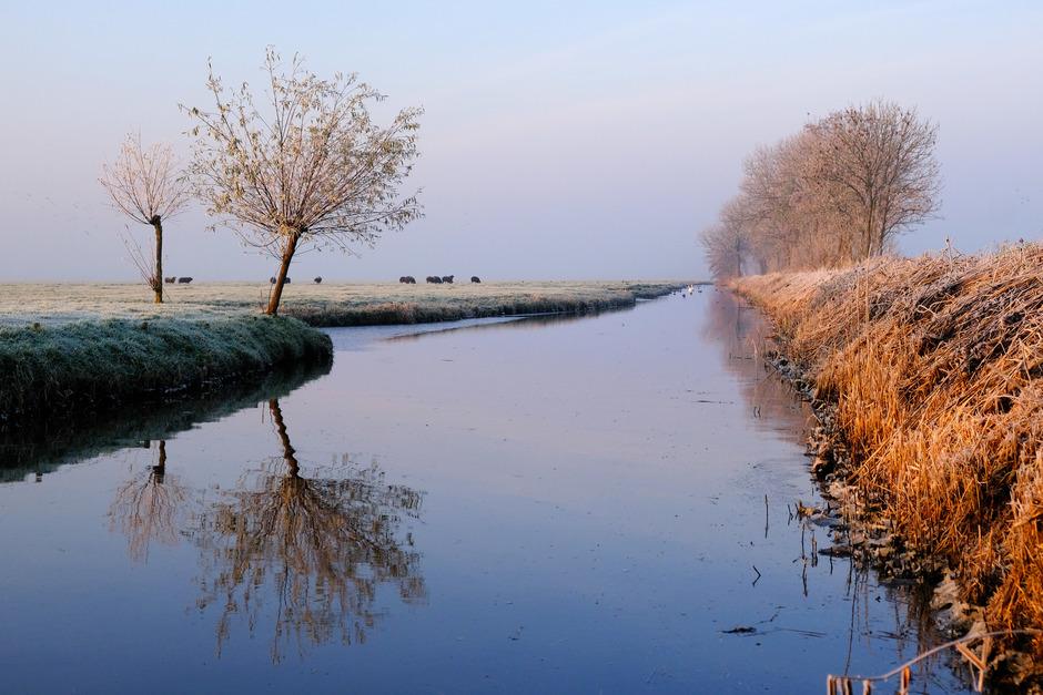 Zuidhollands landschap