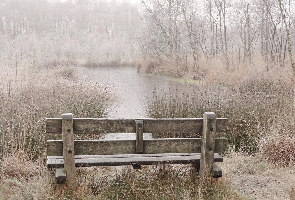 Gisteren een heerlijk winters sfeertje en vandaag weer echt herfst!