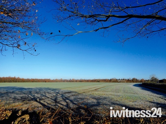 Frost on the field.  project 52