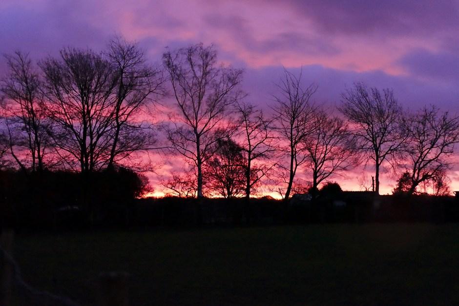 Kleurrijk ochtendgloren in Schinveld.
