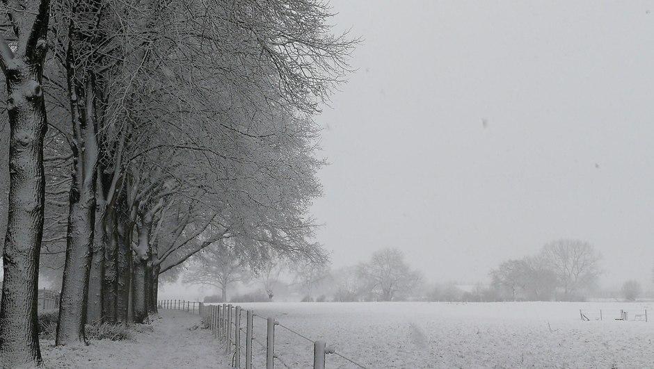 Vandaag precies 2 jaar geleden een dik pak sneeuw
