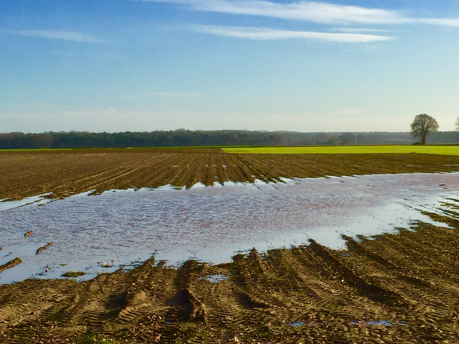 Plassen water kunnen drogen in zon en wind