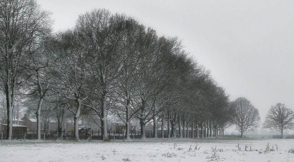 Sneeuw 11 Dec 2017