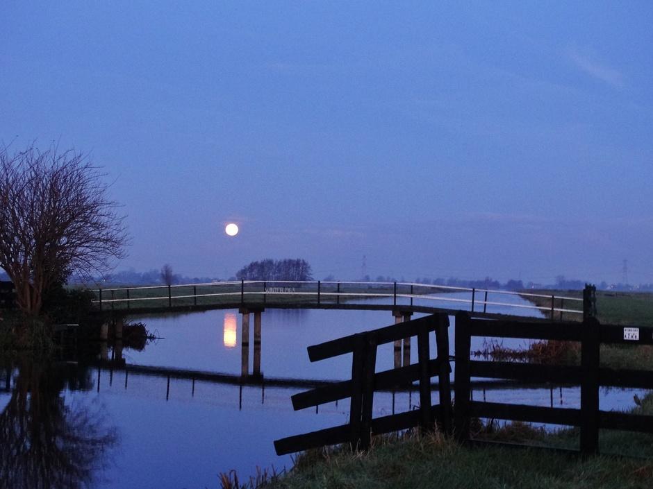 Vanmorgen vroeg. Volle maan