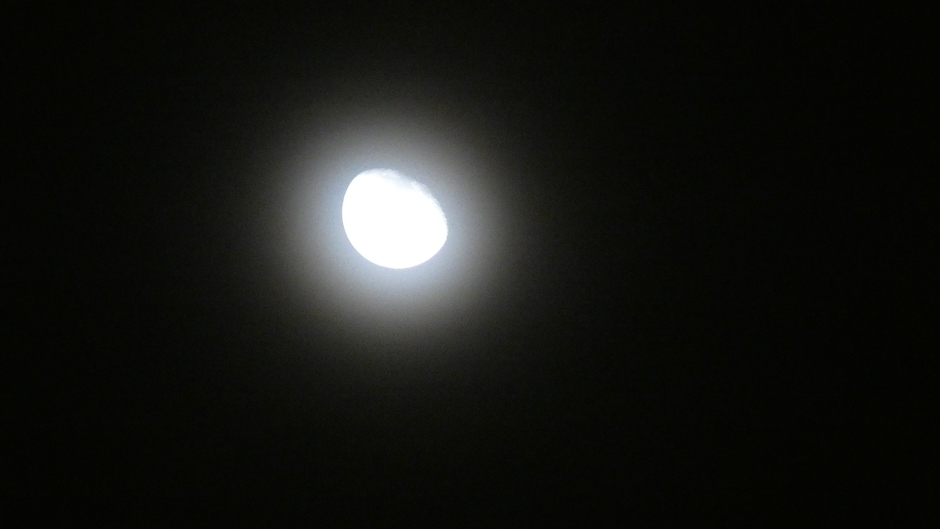 Maan met corona