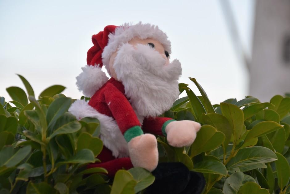 Kerstmannetje in het groen