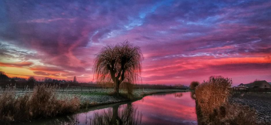 Heerlijk kleurrijk vanmorgen bij de Linge