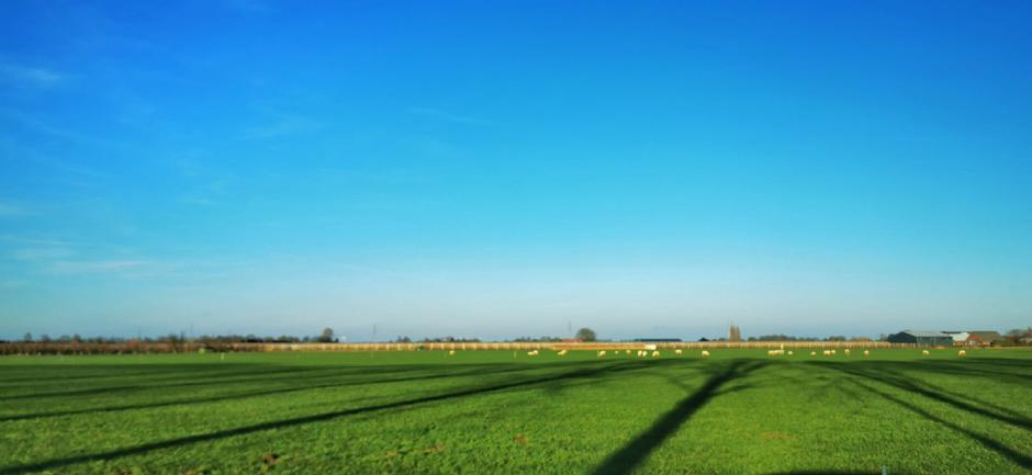 Lange schaduwen en blauw vandaag