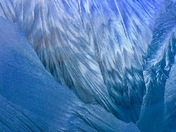 Project 52 - Freezing weather - Ice formation on car windscreen