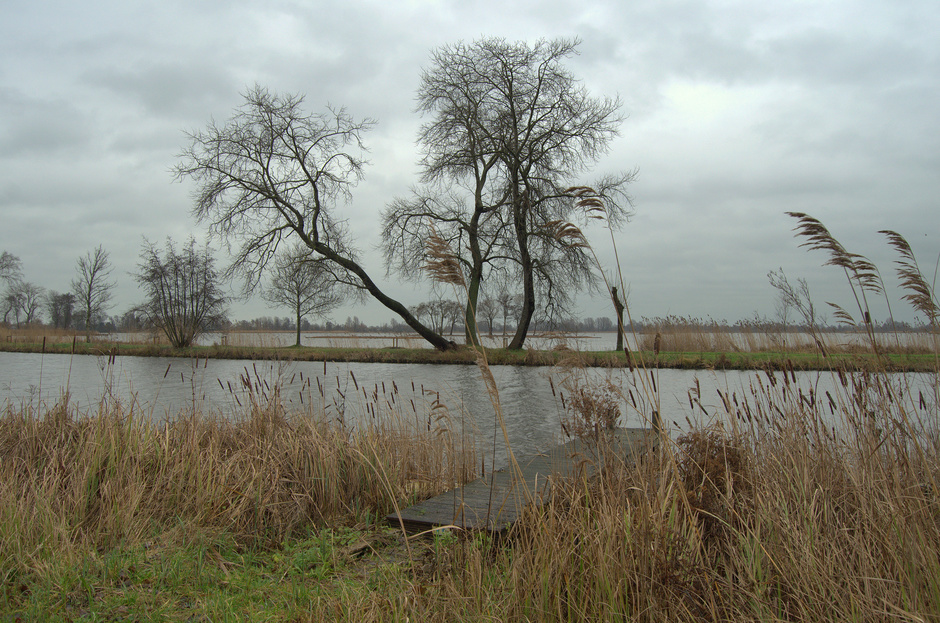 Regen,grijze bewolking op Dinsdagmiddag en een stormachtige Z/W wind!