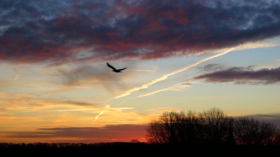 rood en bewolkte zonsopkomst