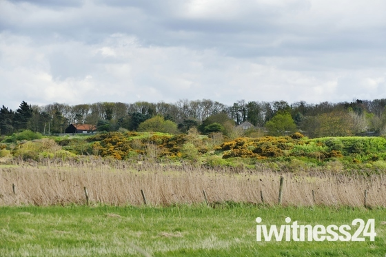 LOOKING TOWARDS WIVETON FROM BLAKENEY