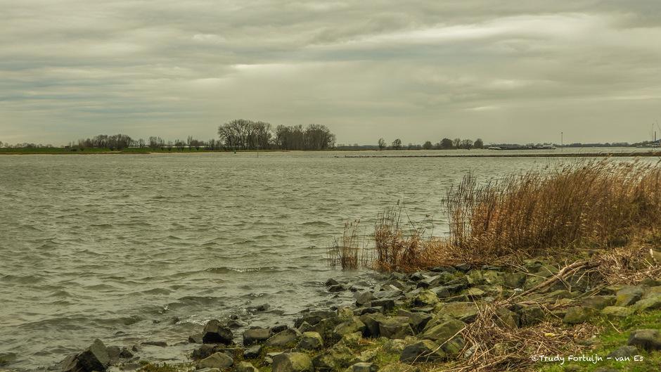 Wind, grijs en zo nu en dan regen bij de Waal.
