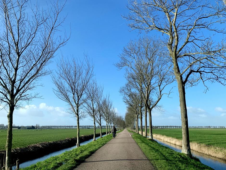 Wandelaars in de Beemster