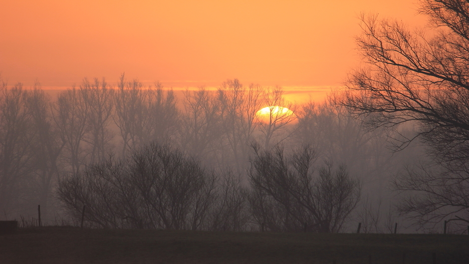 Heiige zonsopkomst bij de Lek bij Wijk bij Duurstede