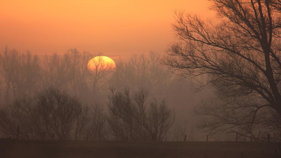Mooie zonsopkomst bij de Lek, beetje heiig | Wijk bij Duurstede