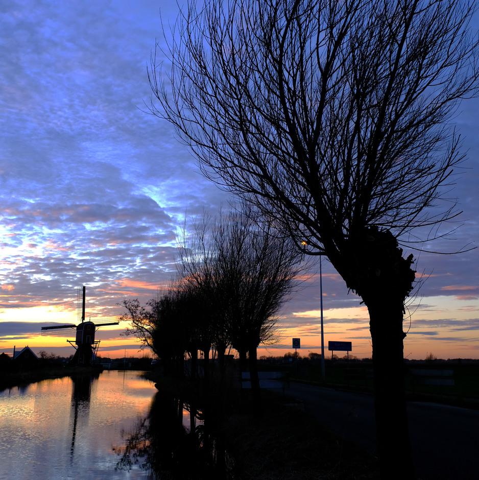 silhouetten van wilgjes en molen bij zonsondergang