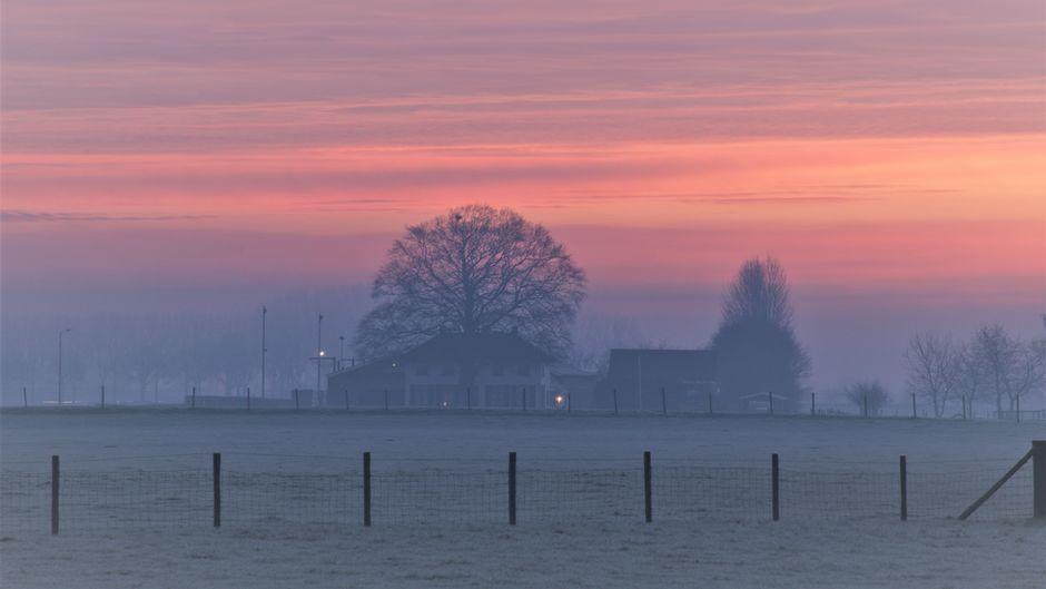 Ochtendgloren, mist en een bevroren landschap