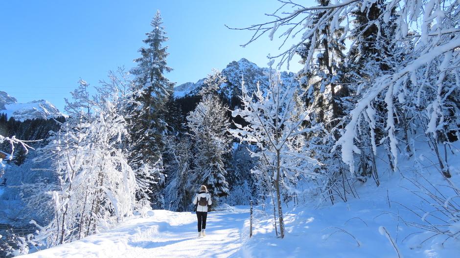 Alpen: mooi :-)