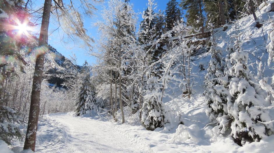 Alpen: veel zon