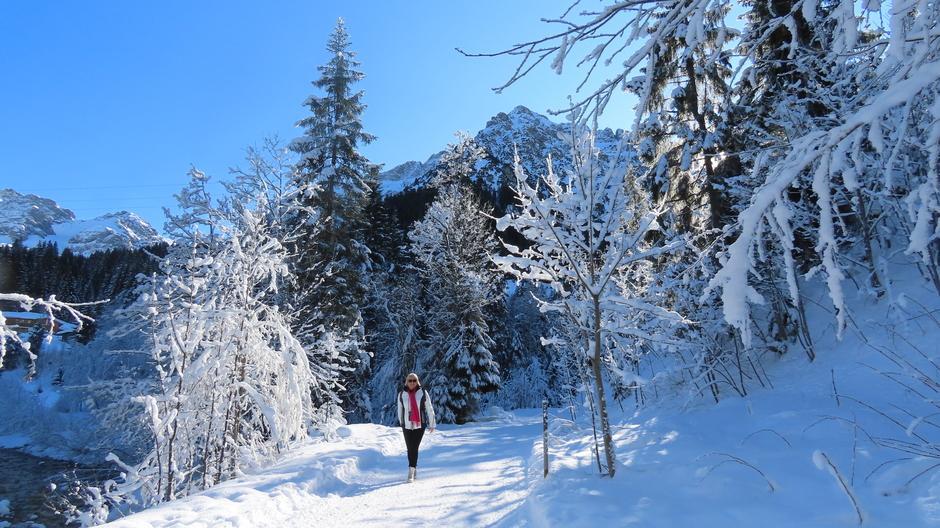 Alpen: wintersprookje