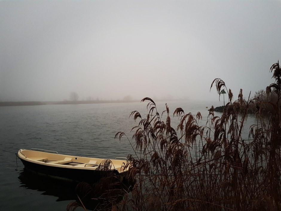 Mist boven de Afgedamde Maas
