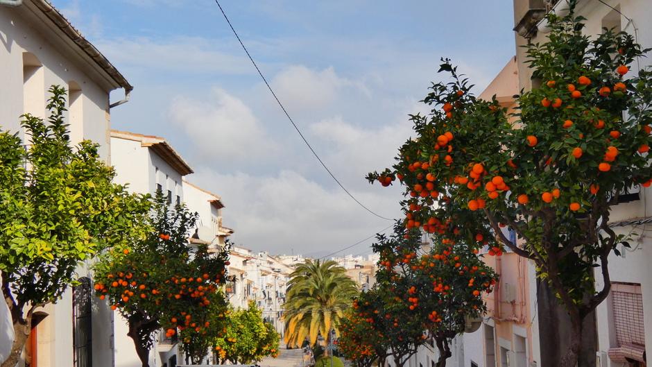 Zon, wolken en sinaasappels in de straat