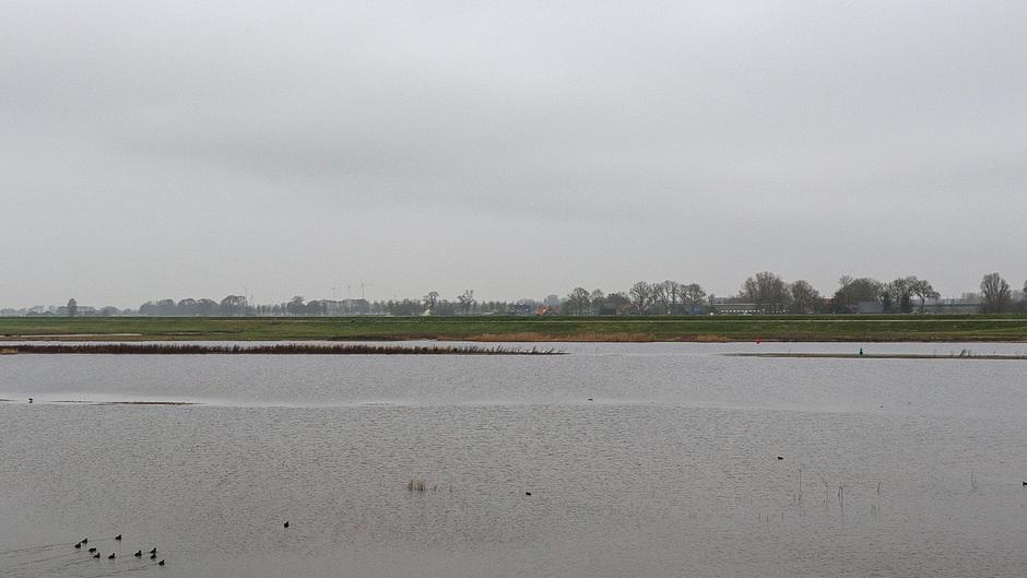 25-01 Een grijs weerbeeld in Kamperveen