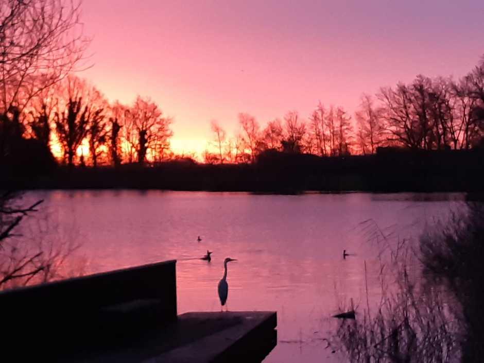 In Deurne vanmorgen, morgen rood....water in de sloot