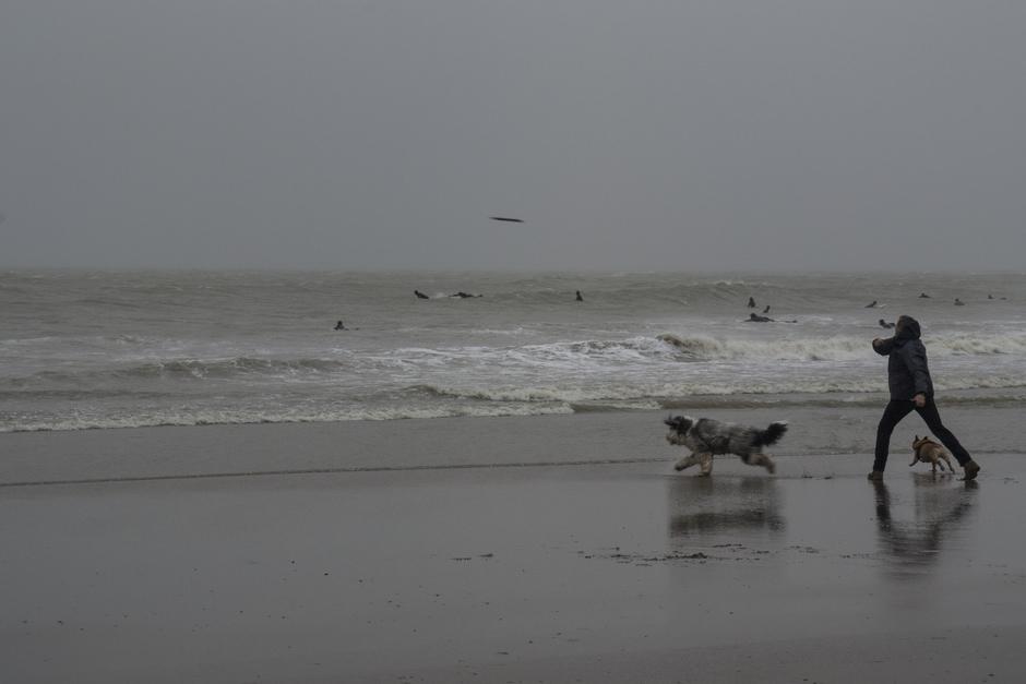 Wind bij Scheveningen zorgt voor vertier