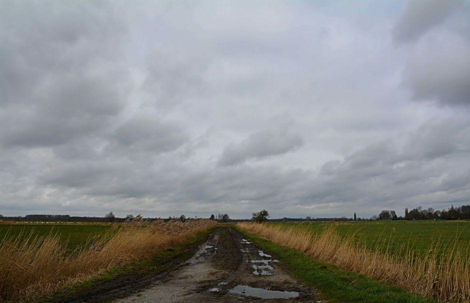Wolken en veel wind
