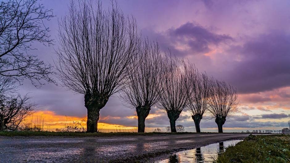 Kleurrijke zonsopkomst in Beesd