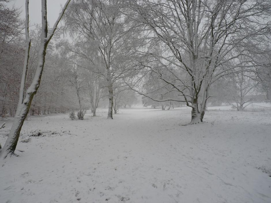 Toch een beetje winter.