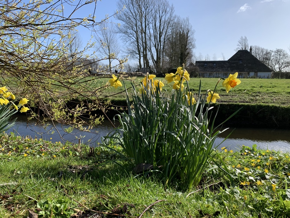 Voorjaar in aantocht