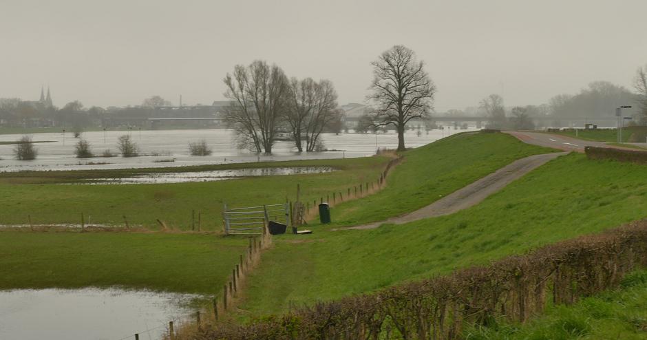 Ondergelopen uiterwaarden, IJssel Deventer