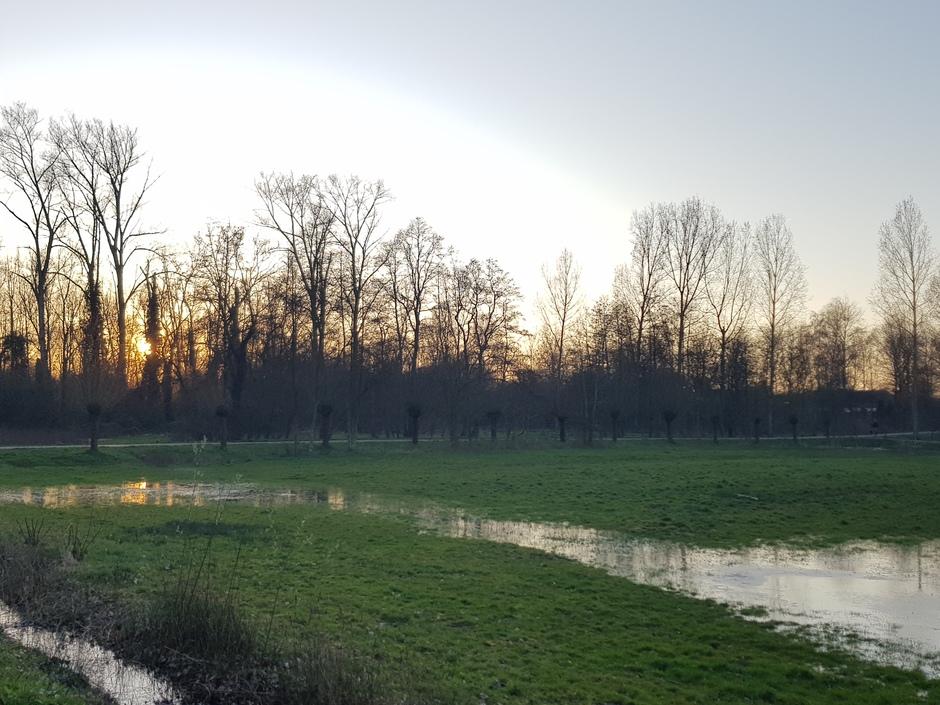 'Wetlands' Eindhoven