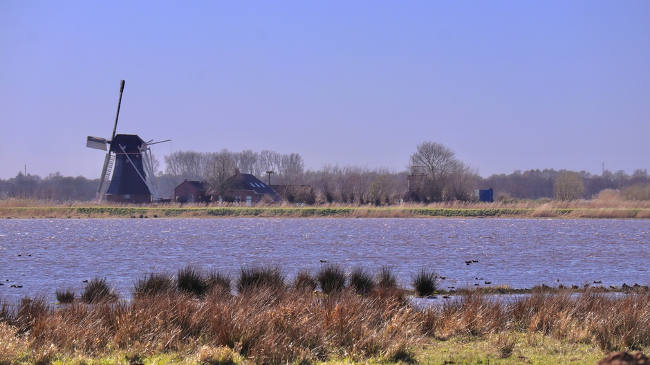 Onbewolkt in Westerbroekstermadepolder.