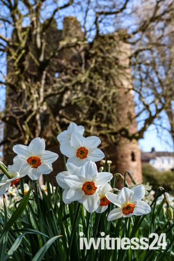 Spring in Norwich