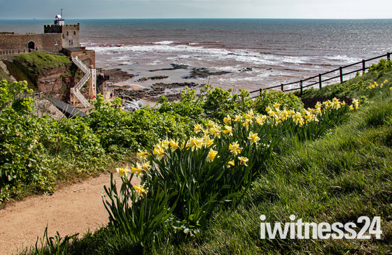 Photos taken on a  March sunny day in Sidmouth