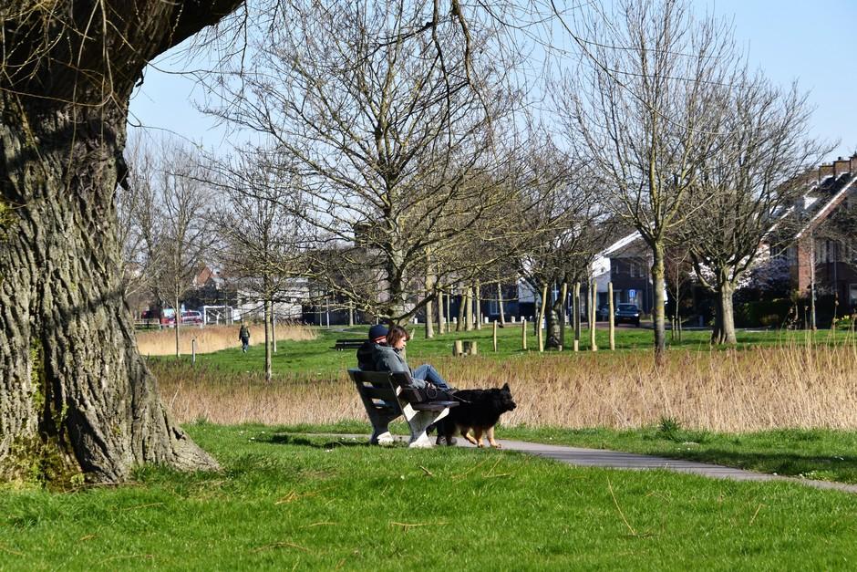 Bankje in het park
