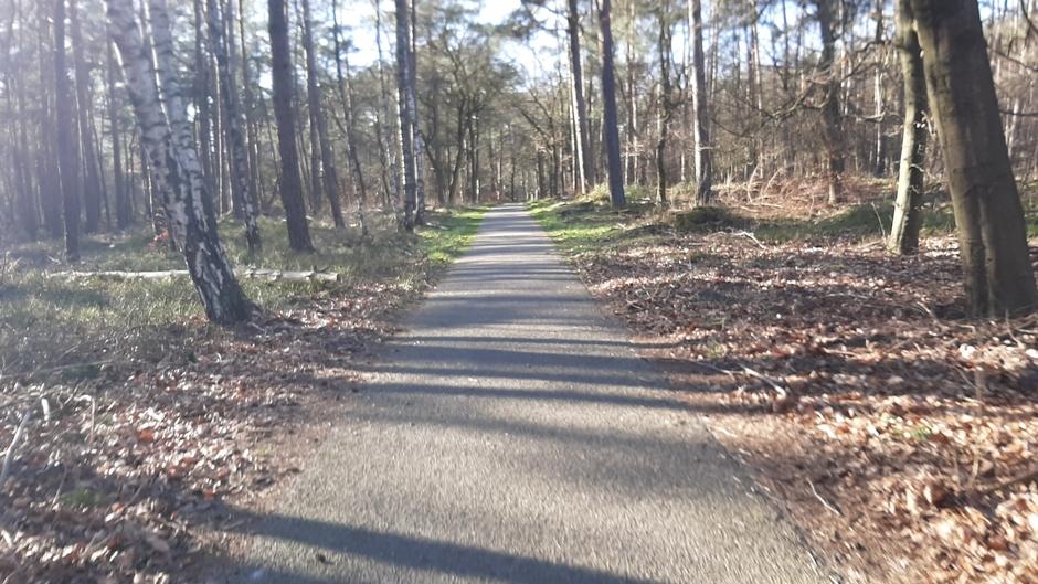 Mooi weer om te fietsen in het Bos.