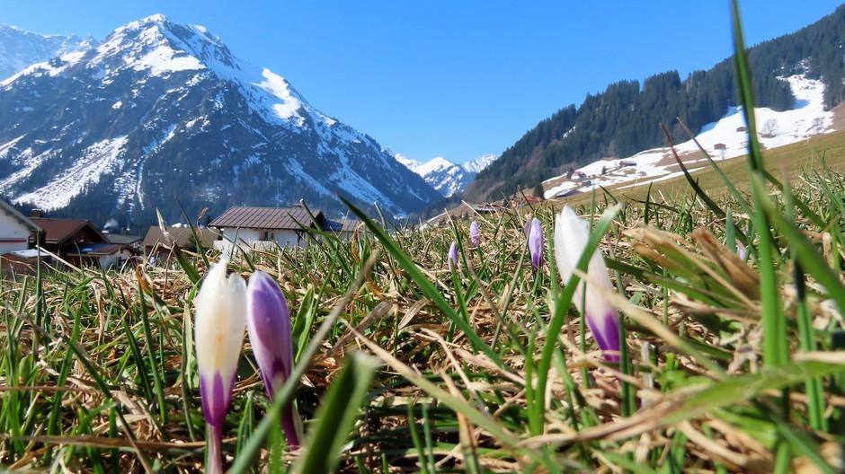 Alpen: Nrd Alpen vrij zonnig