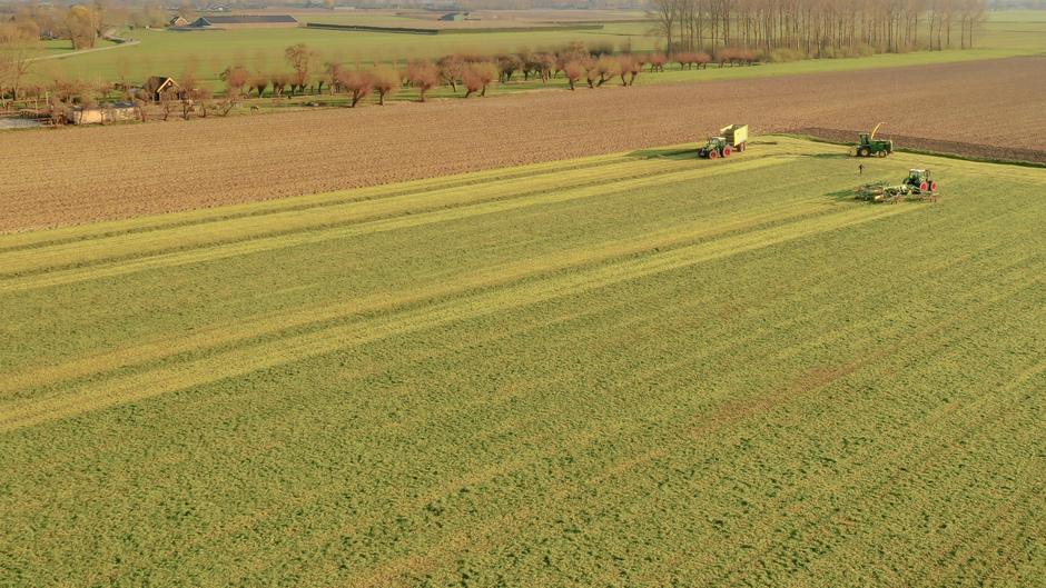 Het eerste gras is weer gehakseld vanavond om 17.30 uur